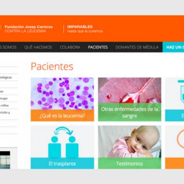 Leucemia: Fundación Josep Carreras