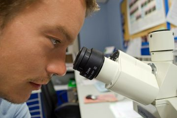 Descubren nuevas funciones de una proteína clave en la leucemia