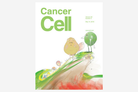 A-to-I RNA Editing Contributes to Proteomic Diversity in Cancer