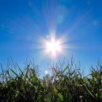 El sol puede ser muy perjudicial en los pacientes con enfermedades reumáticas