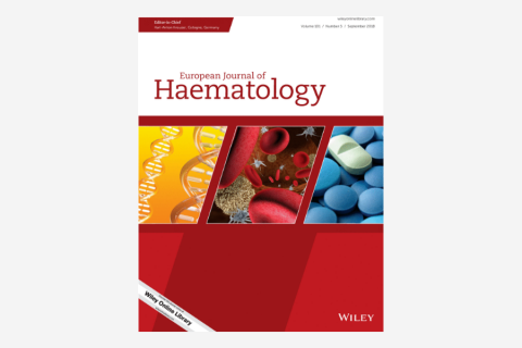 Allogeneic hematopoietic stem cell transplantation in r/r Hodgkin lymphoma after treatment with checkpoint inhibitors: Feasibility and safety