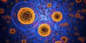 Análisis de sangre predice éxito de terapia linfoma