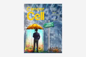 Cancer Cell nov-18