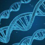 Variantes genéticas que influyen en el cáncer colorrectal