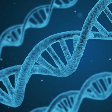 Descubren 40 variantes genéticas que influyen en el cáncer colorrectal