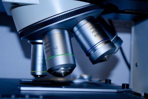 La vascularización de los tumores se puede controlar actuando sobre un gen sobreexpresado
