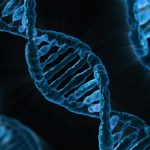 Mutación genética para combatir la EII