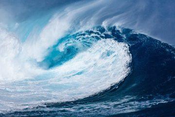 Una bacteria del agua del mar podría ser la clave para tratar el…