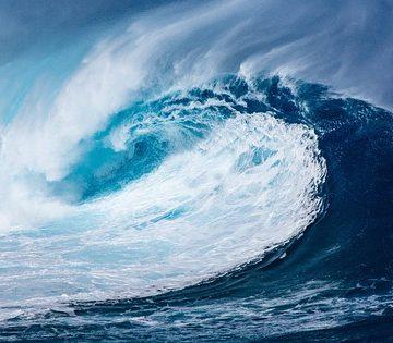Una bacteria del agua del mar podría ser la clave…