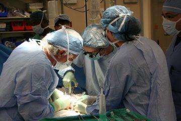 España alcanza el máximo histórico de trasplantes de médula ósea