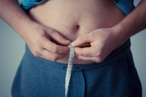 Un proyecto europeo identifica bacterias intestinales que combaten obesidad y estrés