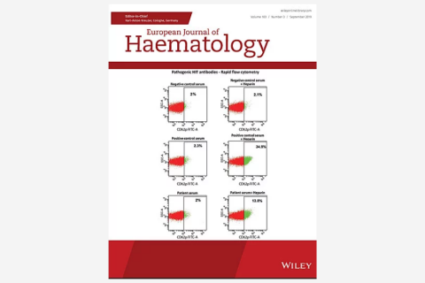 Role of virological serum markers in patients with both hepatitis B virus infection and diffuse large B‐cell lymphoma