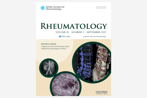 Functional and structural magnetic resonance imaging correlates of fatigue in patients with rheumatoid arthritis