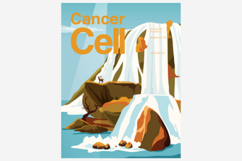 Age-Related Gliosis Promotes Central Nervous System Lymphoma through CCL19-Mediated Tumor Cell Retention