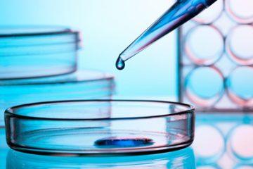 """Dr. Moraleda: """"Hemos aprendido a imitar lo que hace el sistema inmune natural…"""