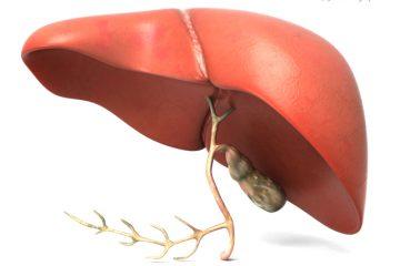 Un biomarcador predice el riesgo de cirrosis hepática desde Primaria