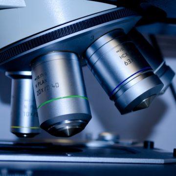 La vascularización de los tumores se puede controlar actuando sobre…