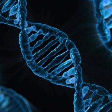Identifican un mutación que mejorará la seguridad de los tratamientos…