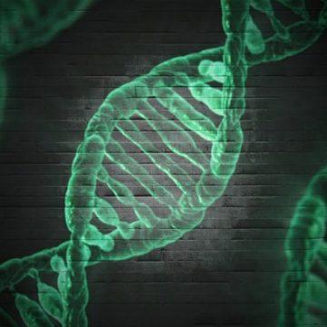 Gran resultado de la terapia génica en enfermedad de células…