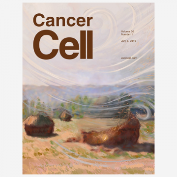 The Stromal and Immune Landscape of Colorectal Cancer Progression during…