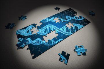 Descubren mutaciones en un gen no codificante presentes en varios tipos de cáncer