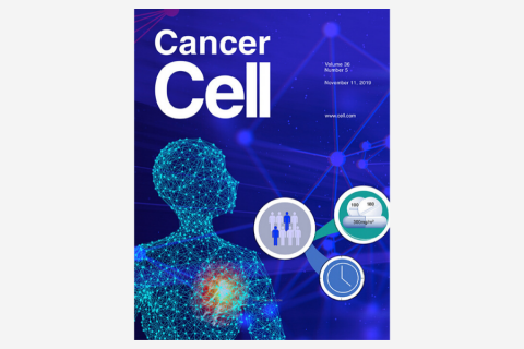 Therapeutic Targeting of CDK12/CDK13 in Triple-Negative Breast Cancer