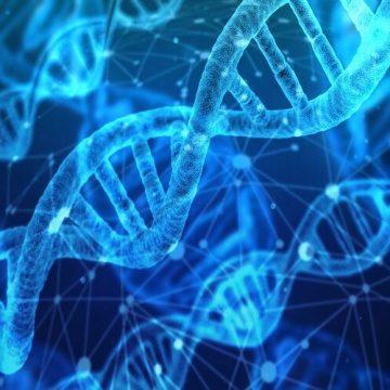 Identifican por primera vez las alteraciones genéticas causadas por las…