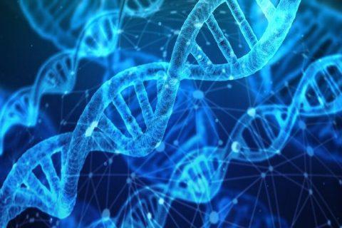 Identifican por primera vez las alteraciones genéticas causadas por las quimioterapias