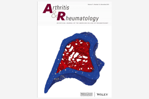 Machine Learning to Predict Anti–Tumor Necrosis Factor Drug Responses of Rheumatoid Arthritis Patients by Integrating Clinical and Genetic Markers