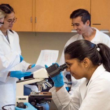 Científicos lideran un estudio que puede ayudar a diagnosticar y…