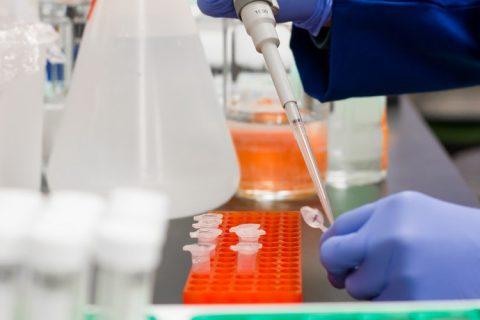 Una herramienta gratuita simplifica la investigación contra el cáncer
