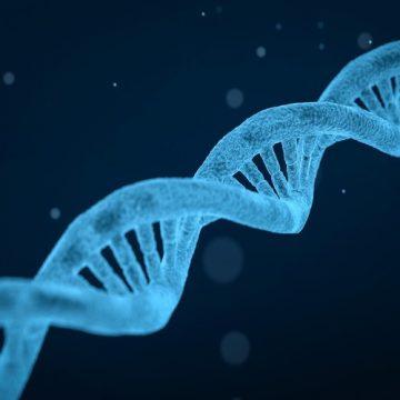 Un ensayo piloto avala la triple edición genética con CRISPR…