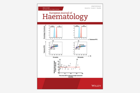 Application of comprehensive geriatric assessment in predicting early mortality among elder patients with B‐cell lymphoma receiving immunochemotherapy