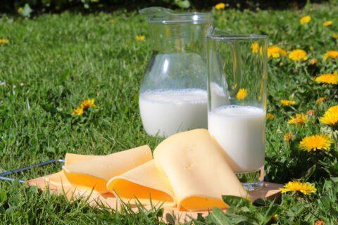 La vitamina D previene la inflamación del colon tras la inmunoterapia contra el cáncer