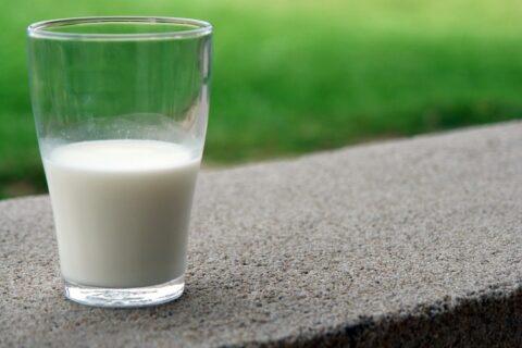 La alergia a la proteína de la leche de vaca, la más común en el primer año de vida