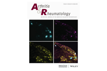 Different Hierarchies of Anti–Modified Protein Autoantibody Reactivities in Rheumatoid Arthritis