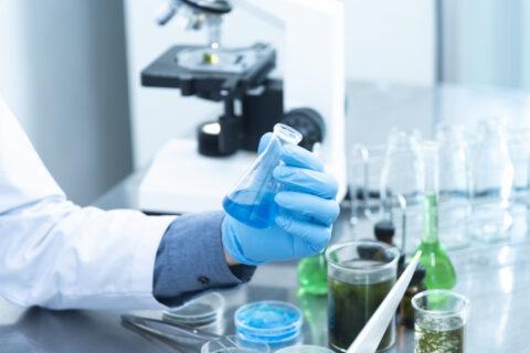 El CSIC crea hidrogeles para cultivar células T y usarlas en inmunoterapia