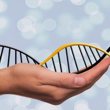 Un pseudogen duplica la probabilidad de cáncer avanzado