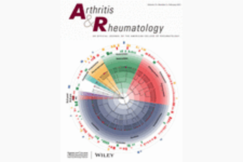 Risk Factors for COVID-19 and Rheumatic Disease Flare in a US Cohort of Latino…