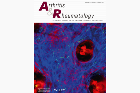 American College of Rheumatology Guidance for the Management of Rheumatic Disease in Adult Patients During the COVID‐19 Pandemic: Version 3