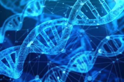 Medicamentos biosimilares, una oportunidad para la sostenibilidad