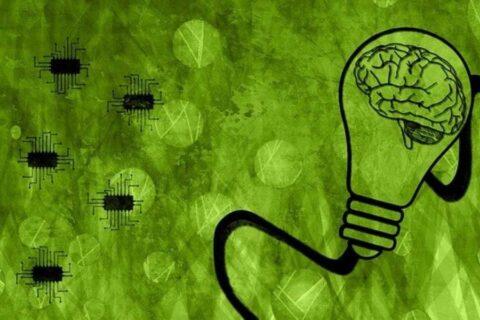 Recrean en chips las interacciones entre el intestino y el cerebro