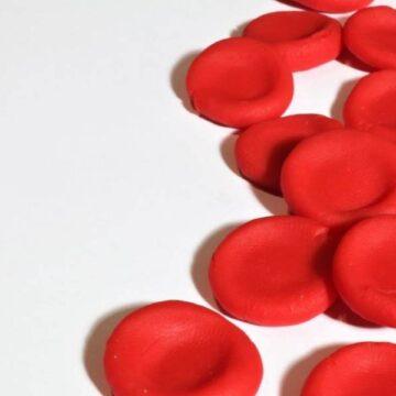 Covid: «El grupo sanguíneo 0 es, como mucho, un 16%…