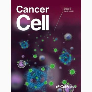 Tumor and immune reprogramming during immunotherapy in advanced renal cell…