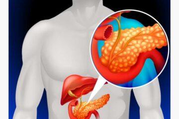 El colágeno juega un papel protector durante el desarrollo del cáncer de páncreas