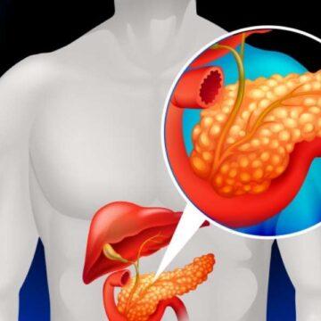 El colágeno juega un papel protector durante el desarrollo del…