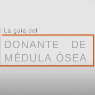 Guía del donante de médula ósea. Fundación Josep Carreras