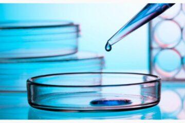 Estudian la eficacia de la inmunoterapia en 29 tipos de tumor