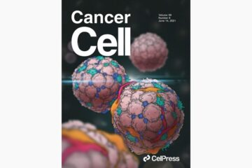 Conserved pan-cancer microenvironment subtypes predict response to immunotherapy